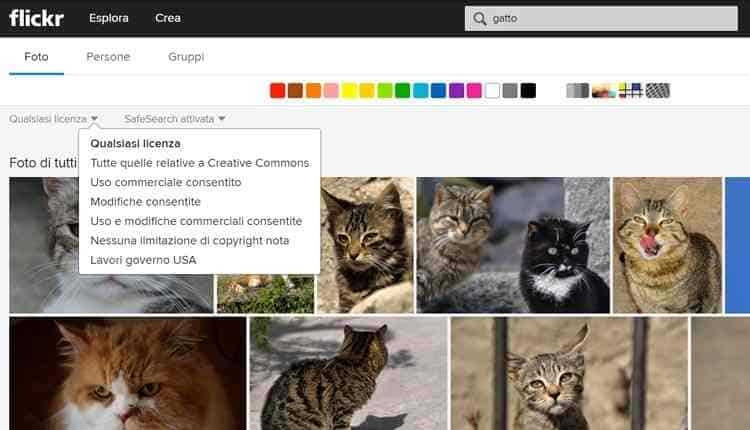 migliori siti immagini gratis flickr